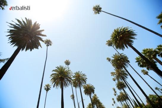 Palme Los Andjelesa