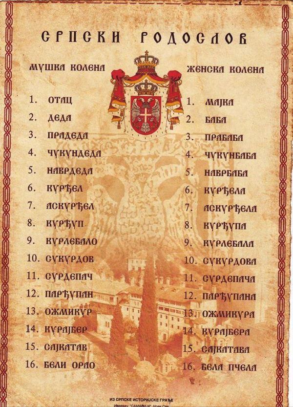 Srpski rodoslov, Verbalisti