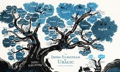 Jezici i jezicko porodicno stablo