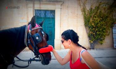 letnja-skola-engleskog-jezika-na-malti-30-2015-verbalist